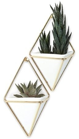 2-Pk Umbra Trigg Hanging Planter Vase and Wall Decor Container
