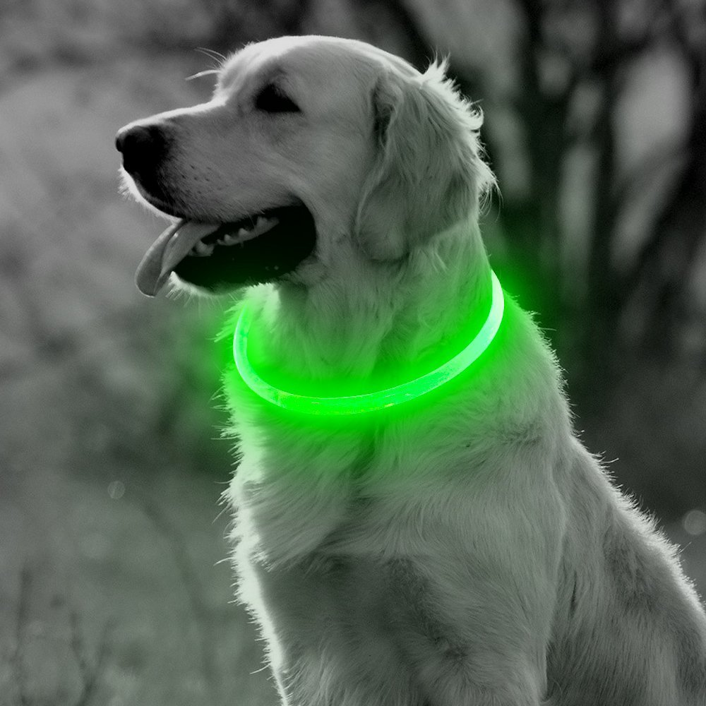 BSeen LED Dog Collar, USB Rechargeable Led Pet Safety Collar, Glow in The Dark Night Safety Dog Lighted Collar with Cuttable Size& 3 Flashing Modes, One Size Suit for Small Medium Large Dogs (Green)