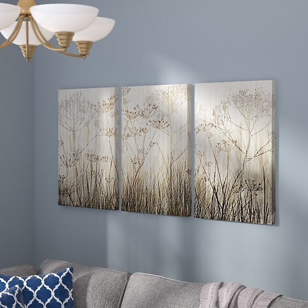 Wildflowers Ivory' Graphic Art On Wrapped Canvas Set