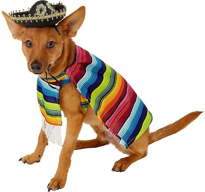 Rubie's Costume Company Serape Dog & Cat Costume