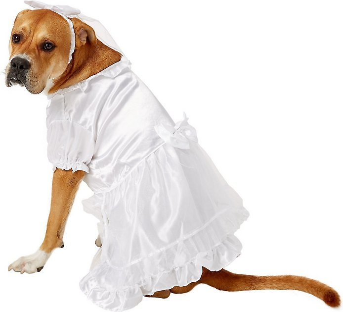 East Side Collection Yappily Ever After Wedding Dog & Cat Dress