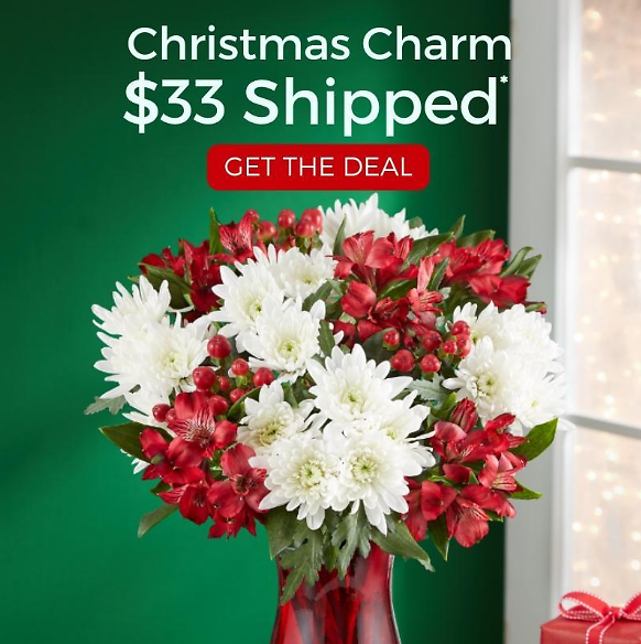 Holiday Flowers Starting $33 + FREE Vase + FREE Shipping!