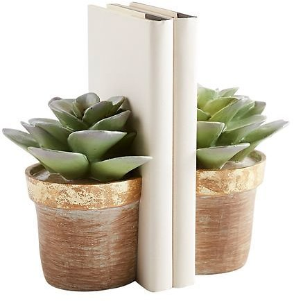 Potted Succulent Bookend Set