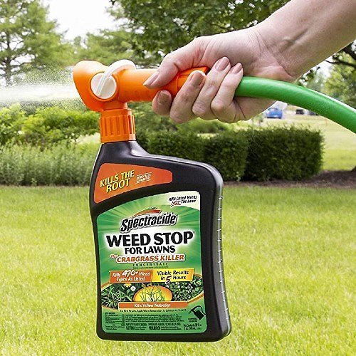 Spectracide Weed Stop for Lawns (32-Oz)