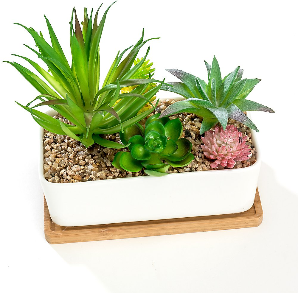 White Rectangular Ceramic Succulent Planter Pot with Bamboo Saucer, Window Plant Container Box
