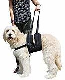 ANWA Walking Dog Harness No Pull Dog Vest Harness Durable, Dog Running Harness Reflective Large Black : Pet Supplies