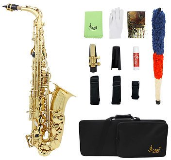 SLADE LD-896 E-flat Brass Pipe Alto Saxophone with Bag Clean Tools Musical Instruments