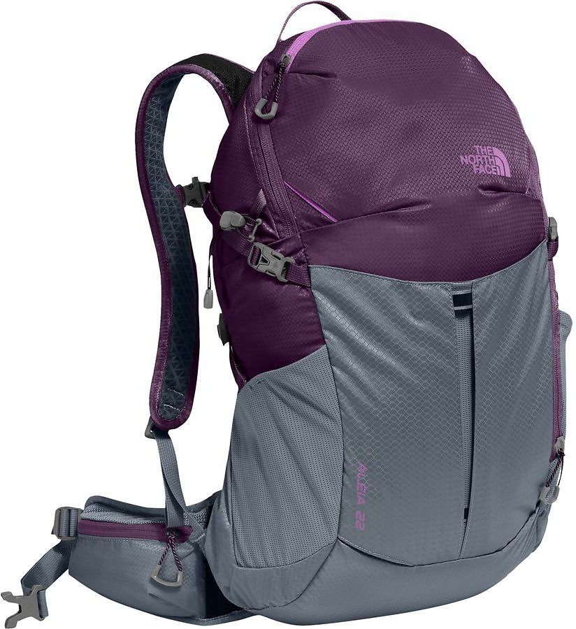 The North Face Aleia 22L Backpack - Women's