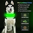 BSEEN LED Dog Collar, USB Rechargeable& Adjustable Glow in The Dark Led Pet Collar, Neoprene Padded Comfortable Nylon Light Up Collars for Small Medium Large Dogs (Medium [15.3-18.5 Inch], Green) : Pet Supplies