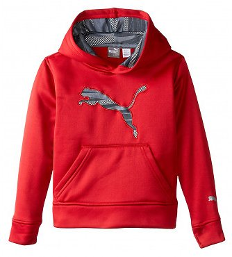 Kids Puma Storm Force 1 Pullover Hoodie With Big Cat Logo