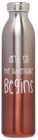 20oz Stainless Steel Insulated Retro Water Bottle - Coral Metallic Ombre