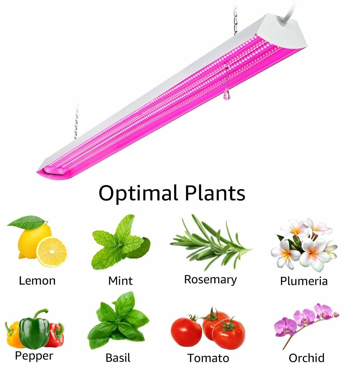 LEONLITE 48W LED Grow Lights, Led Grow Lights for Indoor Grow, UL Certified Plant Grow Shop Lights
