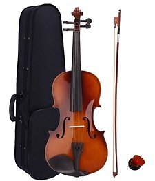 Professional 4/4 Full Size Acoustic Violin with Case and Bow Green Rosin Wood