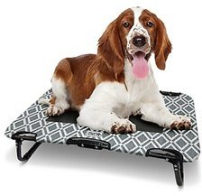 Heart to Tail Pet Travel Cot (9/25)