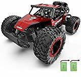 DOUBLE E RC Cars Newest 1:12 Scale Remote Control Car
