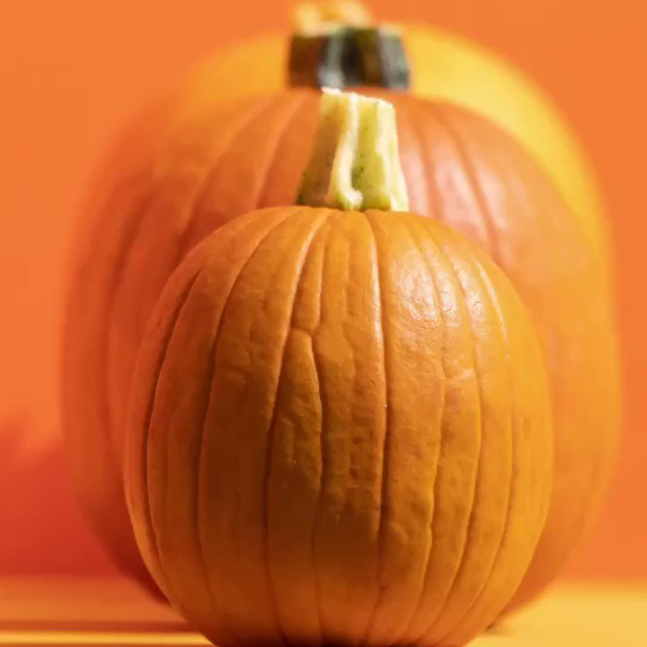 Free 12oz Pumpkin D-Lite Smoothie for Today 2pm - 6pm