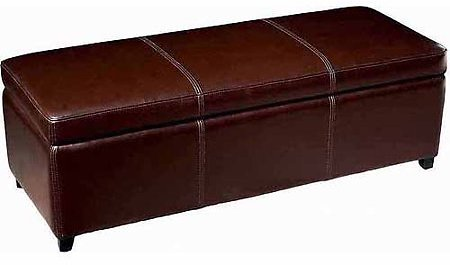 Baxton Studio Dark Brown Full Leather Storage Bench Ottoman