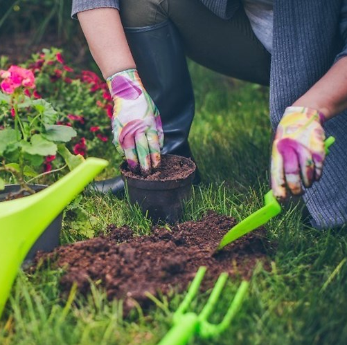 Gardening Deals During COVID-19