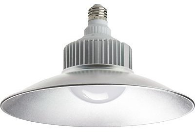 Stonepoint LED Light Bulb — 2,500 Lumens, Model# GGL-30 | Northern Tool