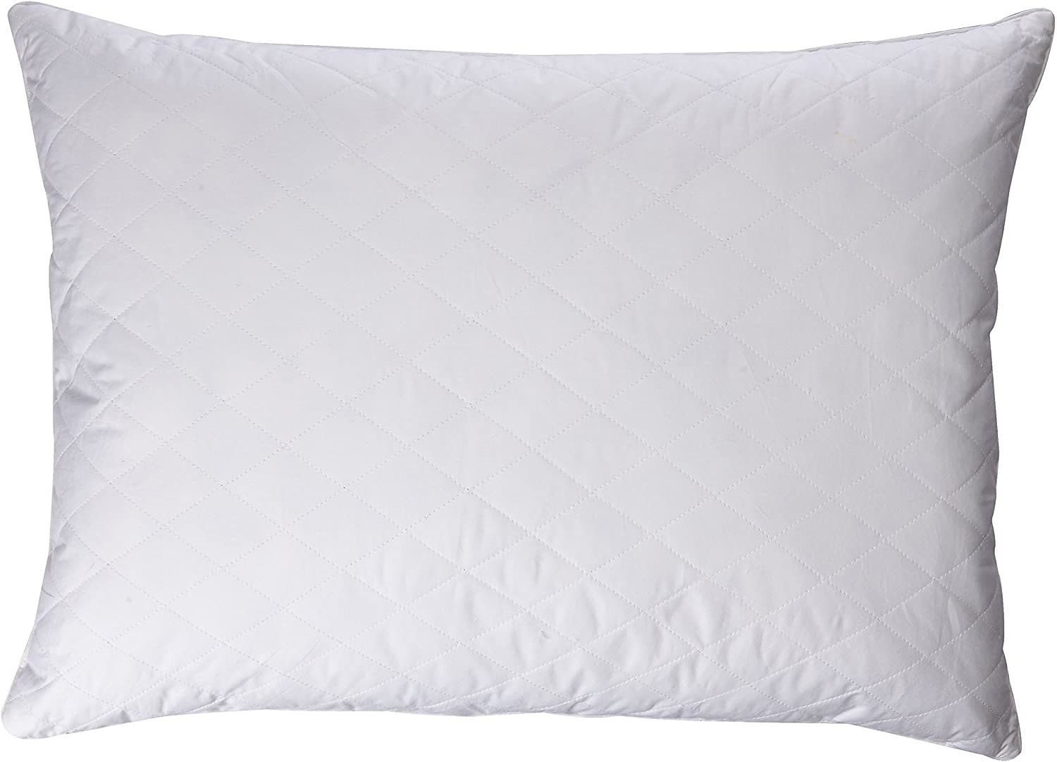 Blue Ridge White Goose Feather and Down Jumbo Gusset Pillow 2-Pack
