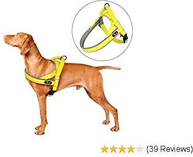Pettom Dog Halter Harness, Reflective No Pull Step-in Harness for Dog Adjustable Padded Safety Nylon Puppy Pet Outdoor Walking Training Vest