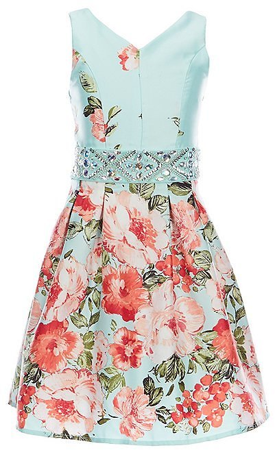 Poppies and RosesBig Girls 7-16 Floral Fit-And-Flare Dress