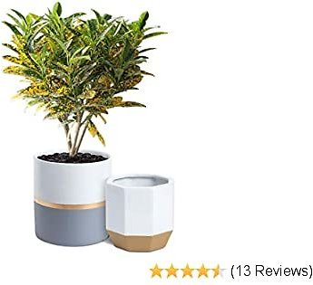 MoonLa White Ceramic Flower Pot Garden Planters - 6.1 + 5.2 Inch Plant Pots with Drainage Hole, Pack 2 Indoor Outdoor Plant Containers with Gold and Grey Detailing (Plants Not Included)