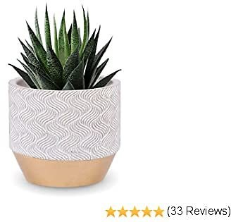 INSPIRELLA Modern Flower Pot Indoor Planter - 5 Inch, Glazed Cement, Mini Plant Pots for Indoor and Outdoor Growing of Succulents, Mosaic Waves Design