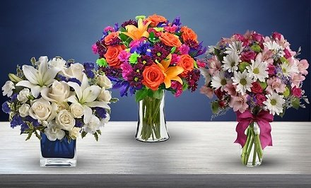 Vibrant Flowers from Blooms + Free Shipping