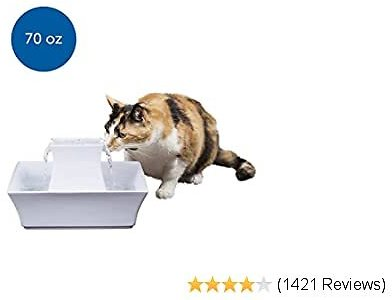 PetSafe Cat and Dog Water Fountain - Automatic Water Dispenser - Drinkwell Pagoda Ceramic Fountain for Pets - Filter Included - 70 Oz