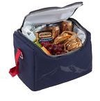 Softpack Cooler, Picnic Plus At L.L. Bean