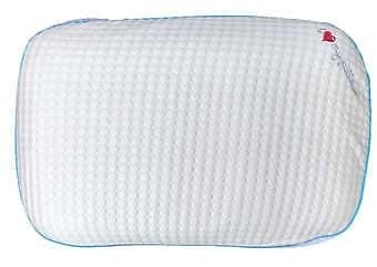 Climate Control Reversible Cover Memory Foam Pillow