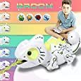 BROOM RC Chameleon Toy, 2020 New Updated Toys for Kids Age 3,4,5,6,7,8 Years Up, Multi Colored Lights & Extendable Tongue & Animated Eyes and Tail, 2.4Ghz Electric(Batteries and Screwdriver Included): Toys & Games