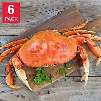 Northwest Fish 6 Whole Dungeness Crab, 10 Lbs.