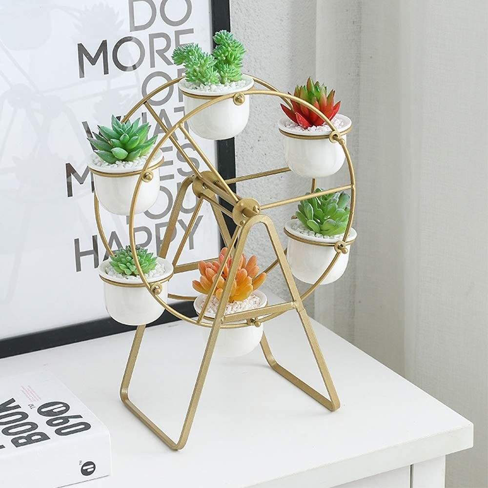 Ferris Wheel Plant Stand with 6 Pots Succulent