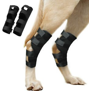 Dog Hind Leg Support Brace Hock Protector Torn ACL Orthopedic Dog Rear 4 Straps