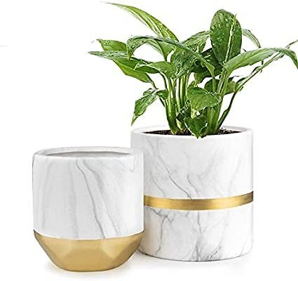 HOMENOTE White Ceramic Flower Pot Garden Planters 6/4.8 Inch Pack 2 Indoor, Plant Containers with Marble Texture and Gold Detail