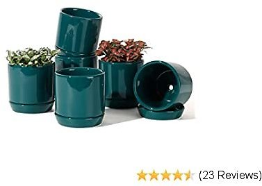 POTEY 055312 Succulent Pots with Drainage Hole & Saucer - 3.1 Inch Glazed Ceramic Small Planters Pot Indoor for Plants Cactus Succulent(Shiny Green, Set of 6, Plants NOT Included)