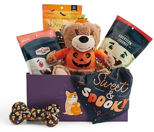 Goody Box Halloween Toys, Treats & Apparel for Dogs - Chewy.com