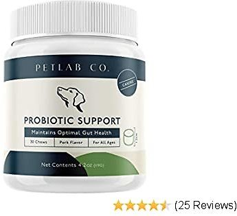 Petlab Co. Probiotic Chew for Dogs - Proven Blend of Prebiotics & Pumpkin Extracts + Natural Digestive Enzymes for Diarrhea + Up