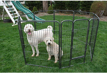 Iconic Pet Metal Tube Pen Dog Exercise and Training Playpen (Choose Your Size) - Sam's Club