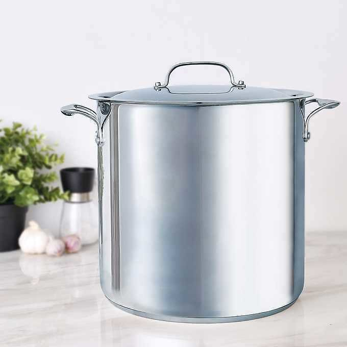 Bergner 16 Quart Stainless Steel Stock Pot with Lid