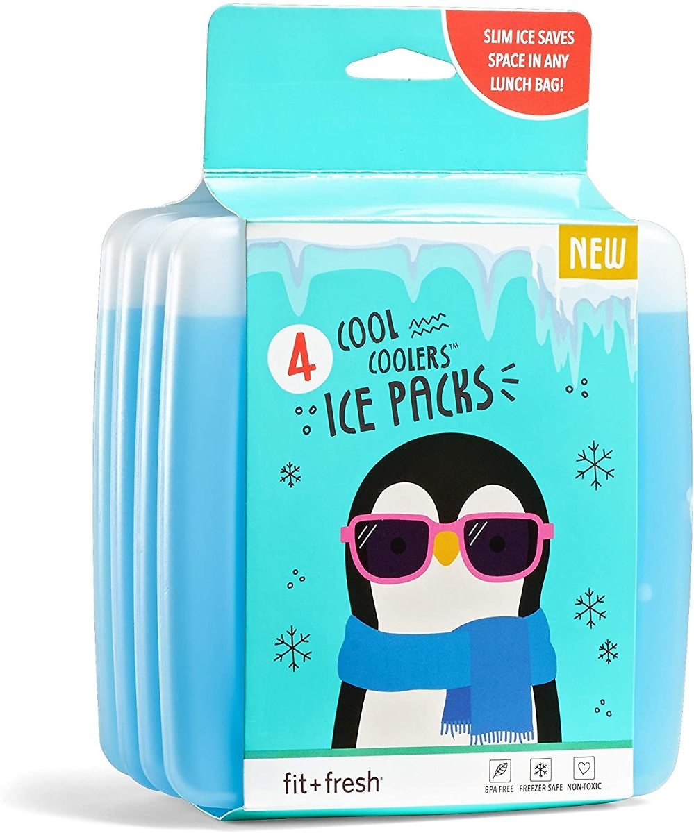 Fit & Fresh Cool Coolers Reusable Ice Packs, 1 Set of 4, Clear