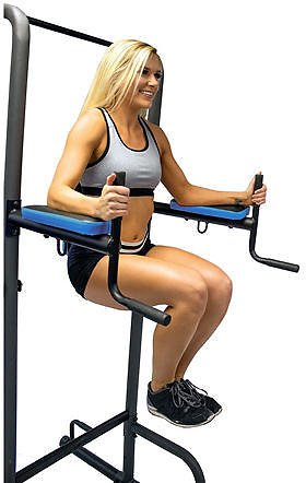 Elite Fitness Deluxe 4-Station Power Tower