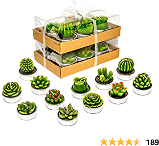 Phyther Cactus Tealight Candles, Unscented Decoration Tea Lights Candle, for Decor, Party Favors, Wedding, Baby, and Bridal Shower (12 Pieces)