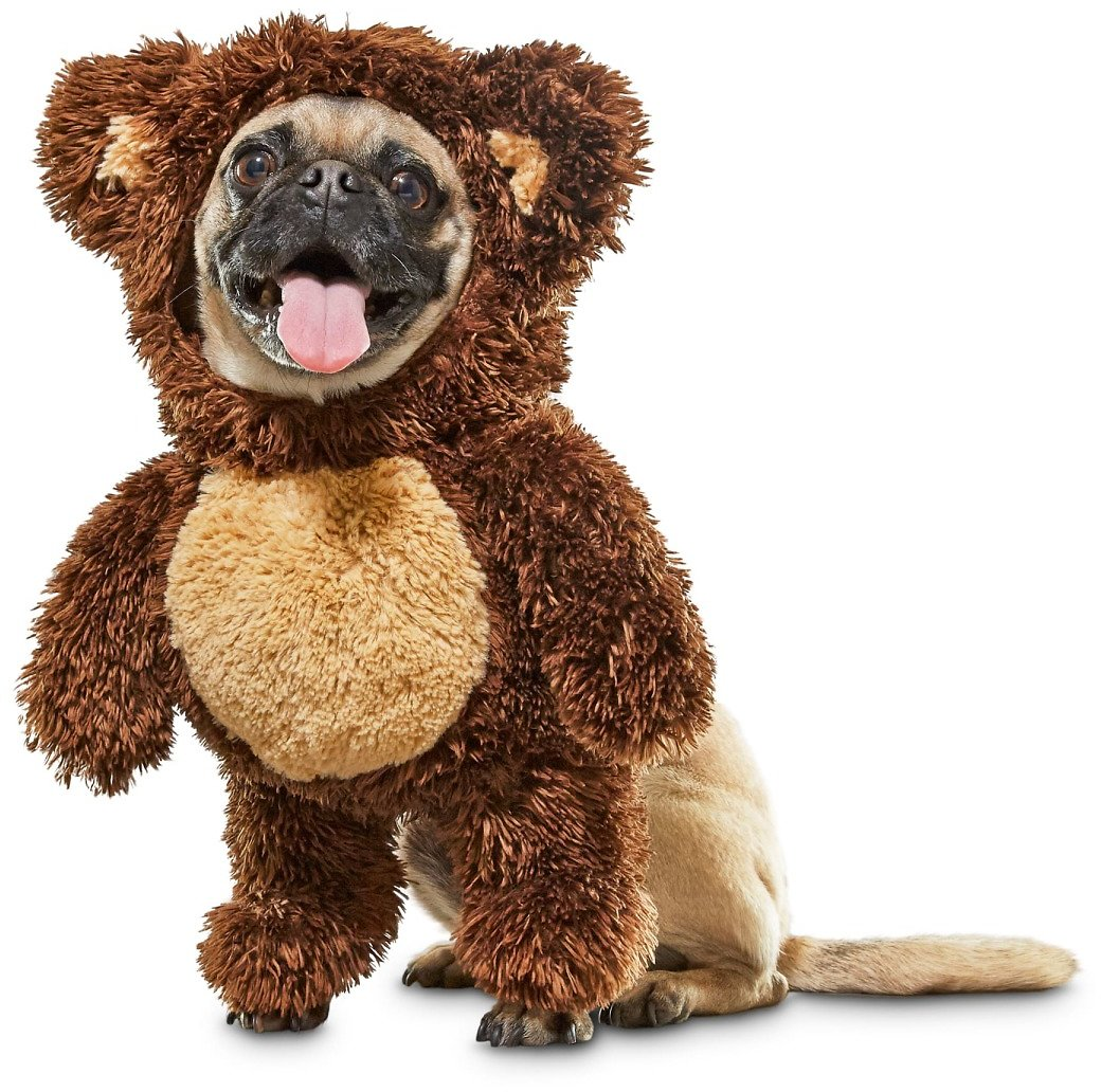 Bootique Teddy Bear Dog Costume, X-Small | Petco