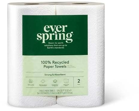 100% Recycled Napkins - 250ct - Everspring™