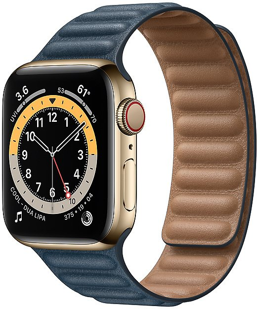 Apple Gold Stainless Steel Case with Leather Link