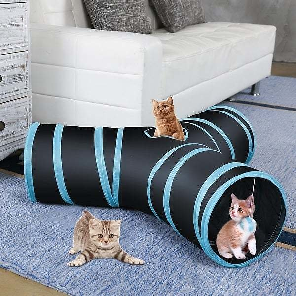 Kitty Tunnel Bored Tube