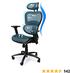 Ergousit Ergonomic Office Chair High-Back Executive Chair with Lumbar Support Breathable Mesh Work Chair with Adjustable Headrest and 3D Armrests, Swivel Chair for Home Office (Black) (XL)